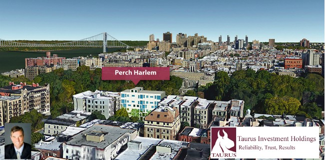 Peter Merrigan - Perch Harlem